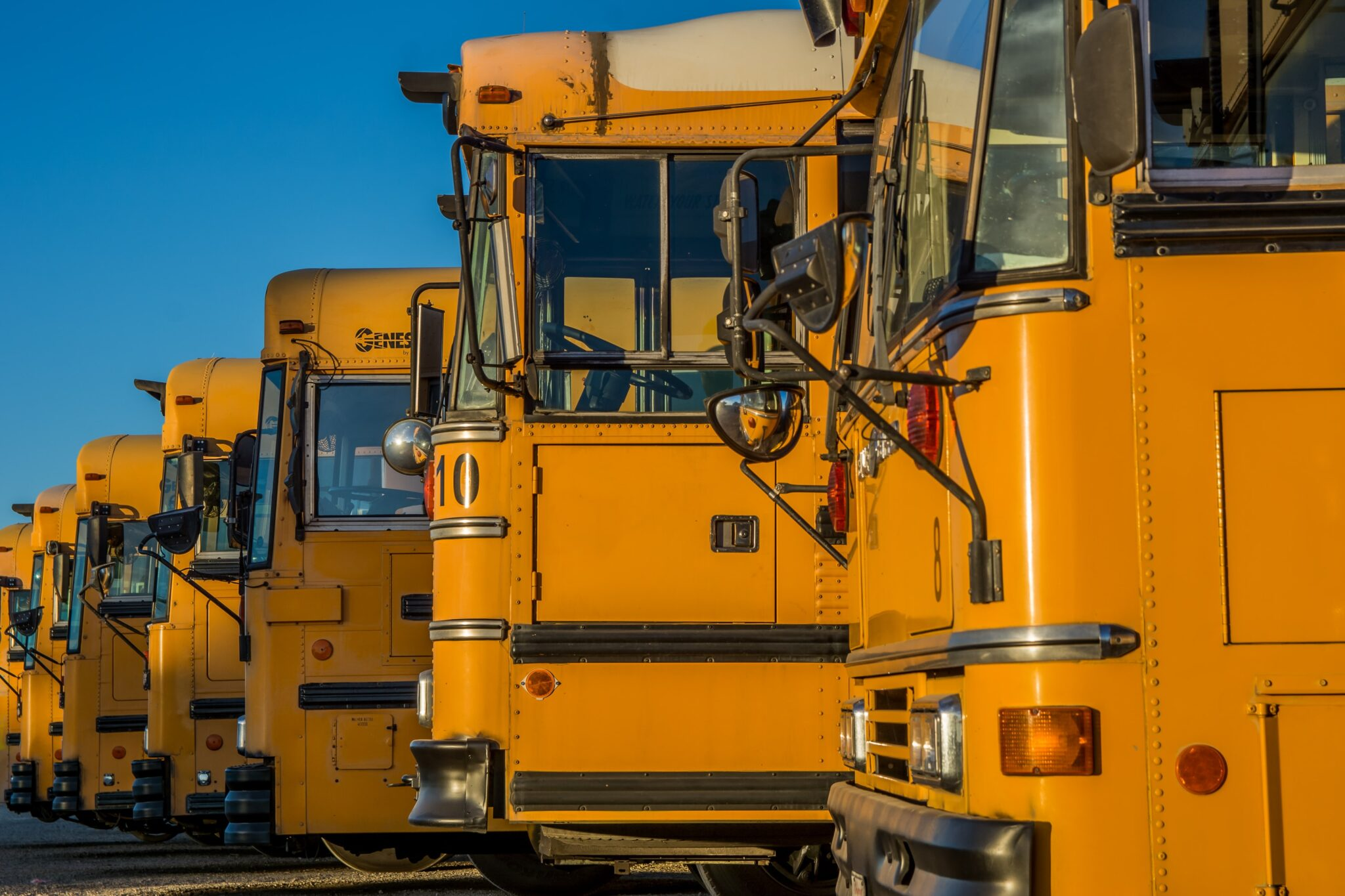 School buses lined up next to each other. For CINS / juvenile law blog.